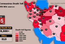 Iran: Coronavirus death toll exceeds 39,300 in 313 cities